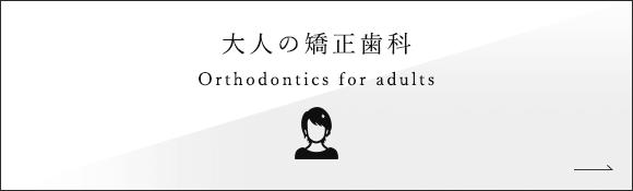 大人の矯正歯